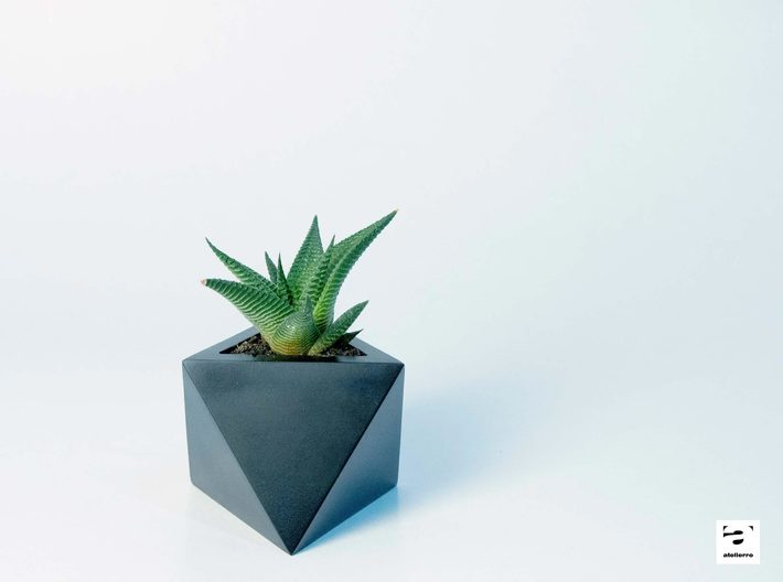 Octaedro - planter for succulents and cactuses 3d printed Octaedro 'S' size with a succulent plant, Haworthia Limifolia