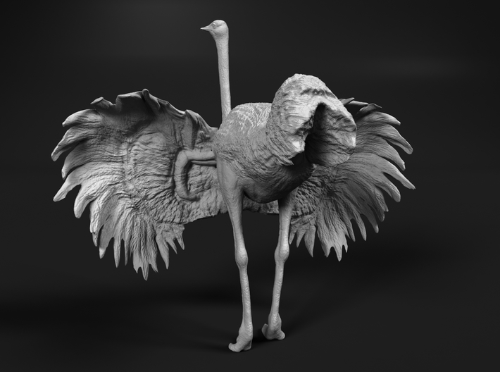 Ostrich 1:25 Wings Spread 3d printed