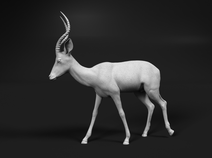 Impala 1:20 Walking Male 3d printed