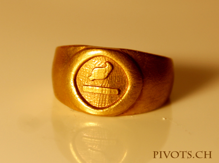 4 Elements - Earth Ring 3d printed Raw Bronze