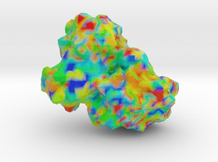 γS Crystallin 3d printed