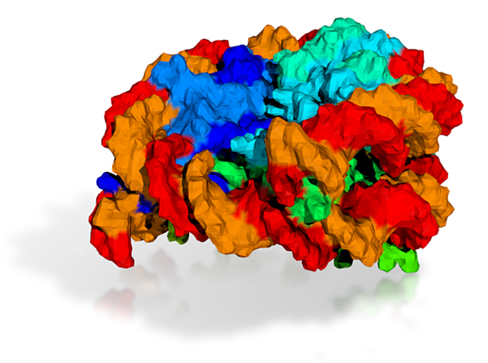 Nucleosome 3d printed