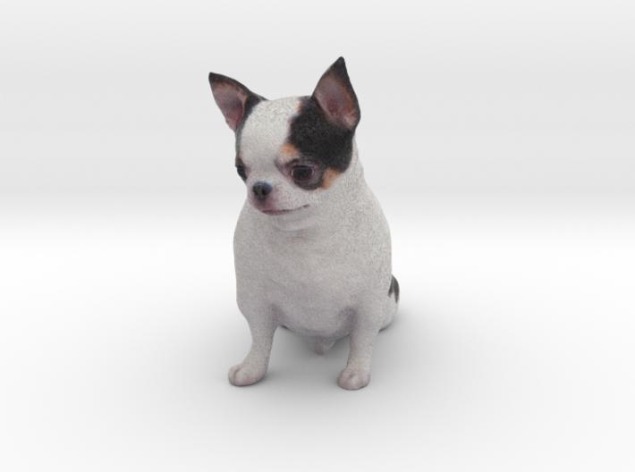 Scanned Chihuahua Dog -887 3d printed