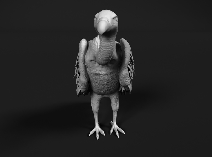 White-Backed Vulture 1:24 Standing 3 3d printed