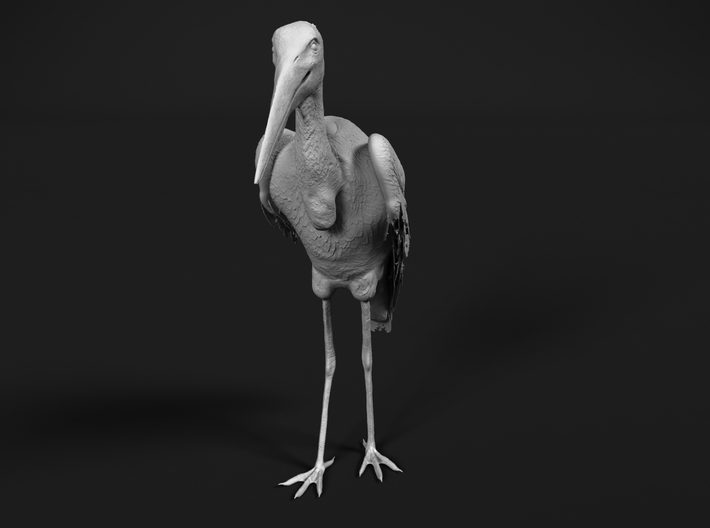 Marabou Stork 1:45 Standing 3d printed