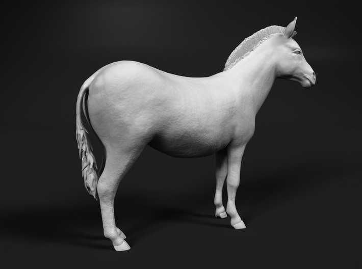 Plains Zebra 1:120 Standing Female 3d printed