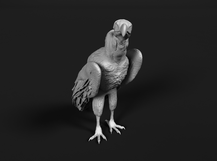 Lappet-Faced Vulture 1:12 Standing 3d printed