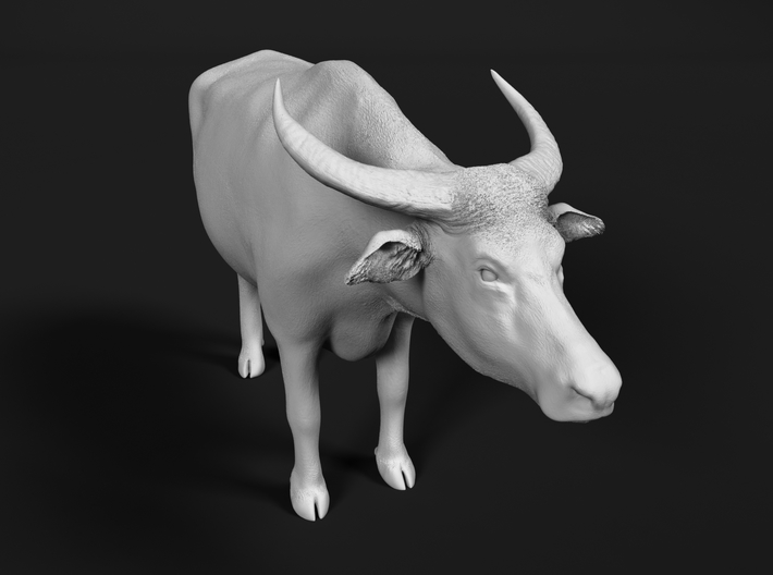 Domestic Asian Water Buffalo 1:22 Grazing Male 3d printed