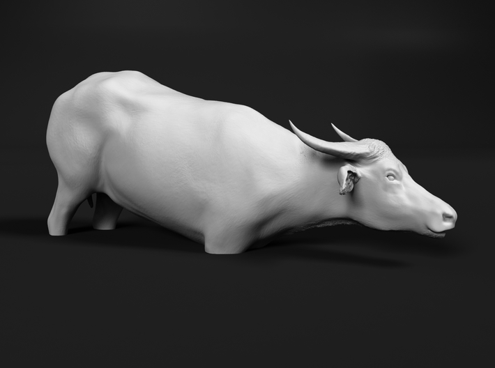 Domestic Asian Water Buffalo 1:16 To Deeper Water 3d printed