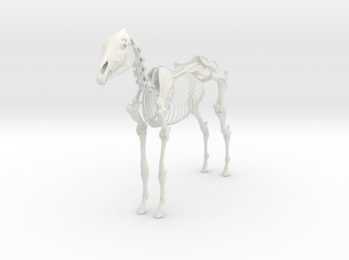 Horse Skeleton Sculpture 1:9 3d printed