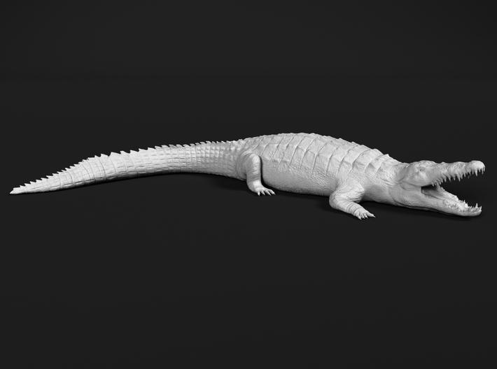 Nile Crocodile 1:24 Mouth Open 3d printed