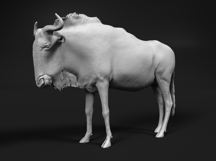 Blue Wildebeest 1:24 Standing Female 3d printed