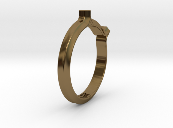 Shapesweeper Double Hexagon Ring 3d printed