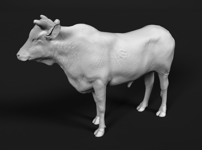 ABBI 1:22 Yearling Bull 1 3d printed