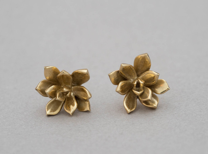 Succulent No. 3 Stud Earrings 3d printed