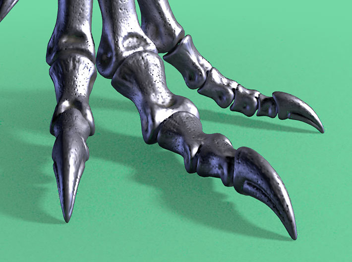 Allosaurus - dinosaur foot model 3d printed Claws close-up