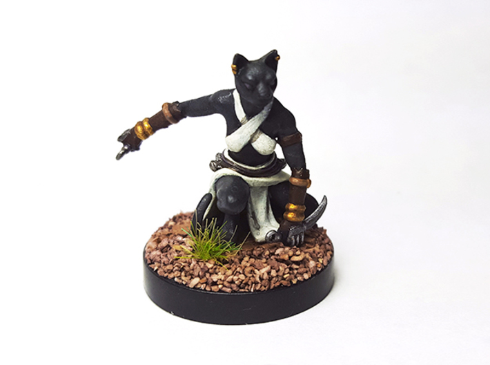 Tabaxi Rogue (Female) 3d printed Painted with acrylic paints and amounted on a custom 1 inch base.