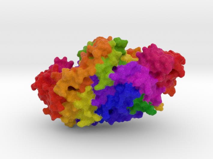 Alkaline Phosphatase 3d printed