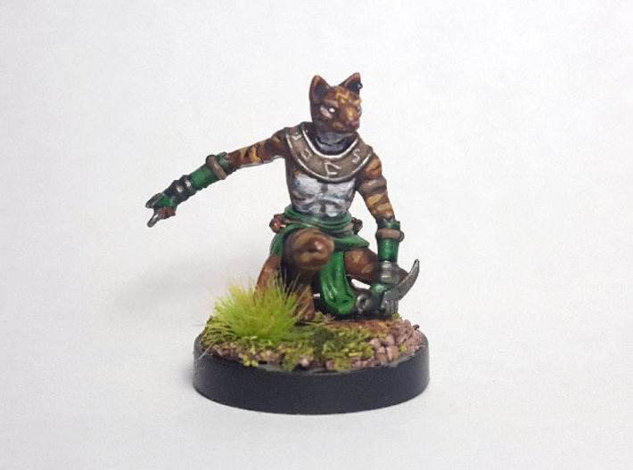 Tabaxi Rogue (Male) 3d printed Painted with acrylic paints and mounted on a custom 1 inch base.