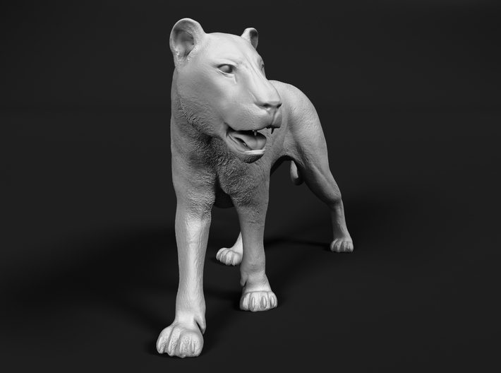 Lion 1:6 Walking Lioness 1 3d printed