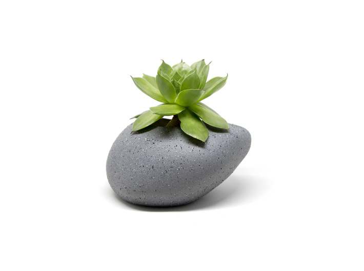 PEBBLE plant pot - Great for succulents 3d printed 3D model spray painted with Dulux Duramax Granite Effect Spray Paint