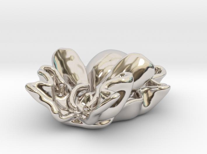 Rose petal bubble snail ( Hydatina physis ) 3d printed