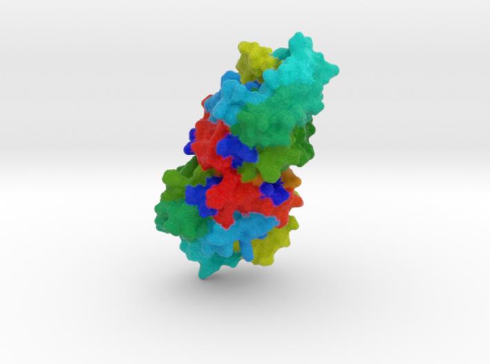 Polynucleotide Kinase 3d printed
