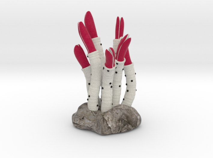 Riftia Tube Worm Sculpture 3d printed