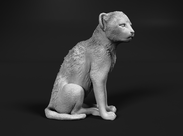 Cheetah 1:20 Sitting Cub 3d printed