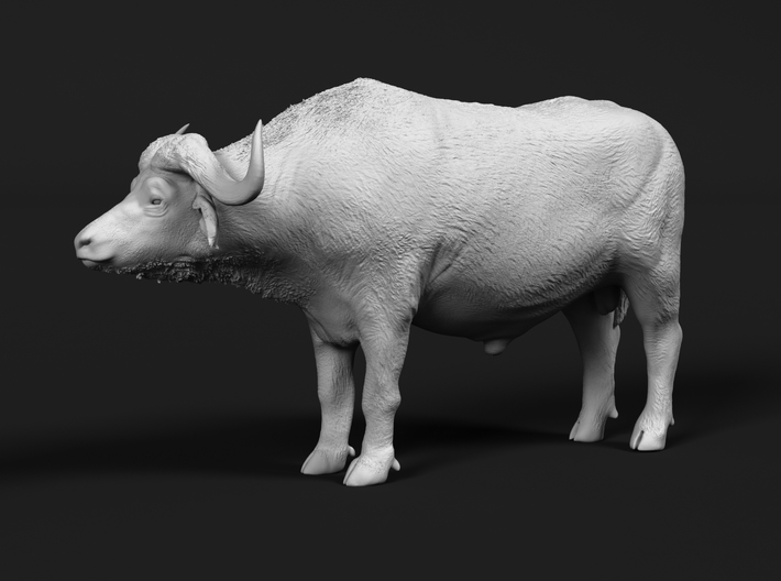 Cape Buffalo 1:32 Standing Male 3 3d printed