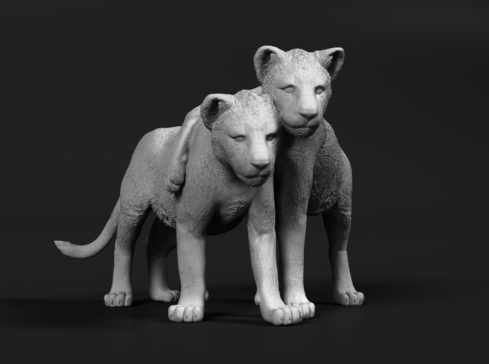 Lion 1:15 Cubs distracted while playing 3d printed