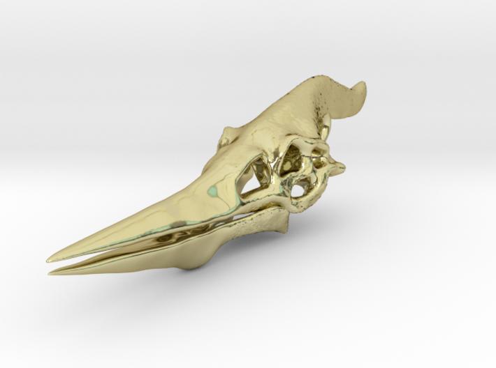 Pteranodon Skull 3d printed