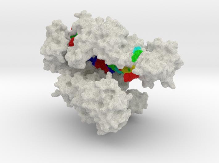 CRISPR-Cpf1 3d printed