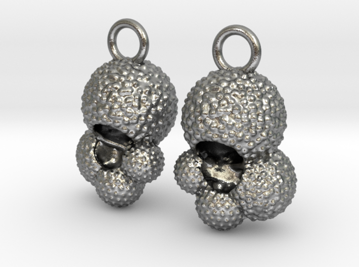 Globigerina Earrings 3d printed