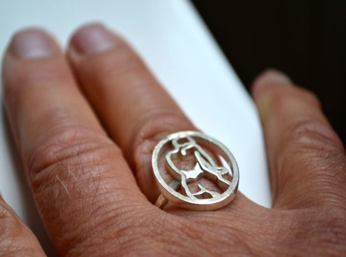 Zegelring20mm 3d printed silver ring