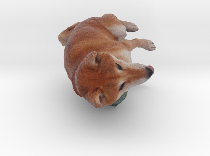 Shiba Inu Dog_6CM 3d printed