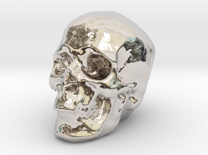 Skull 3DXS 3d printed