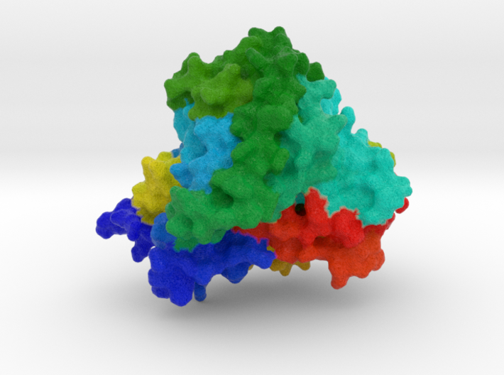CYP1A2 Protein 3d printed