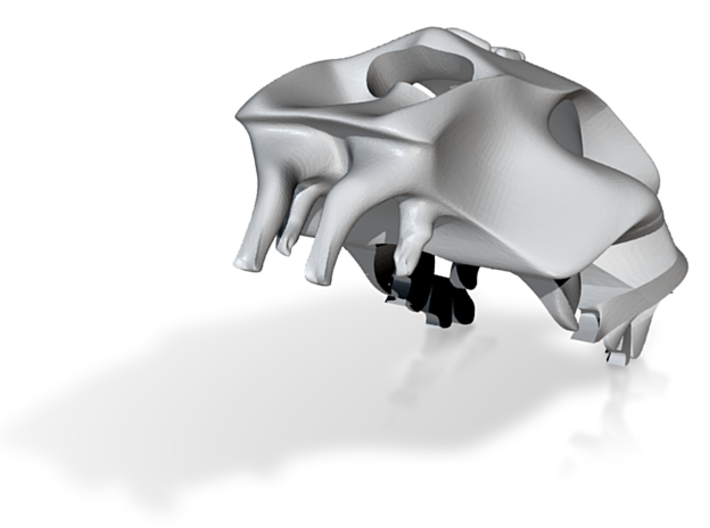 Small TigerSkull 3d printed