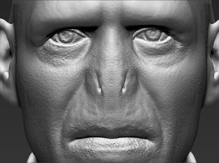 Lord Voldemort from Harry Potter bust 3d printed