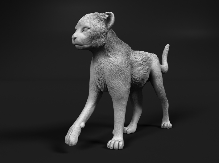 Cheetah 1:16 Walking Cub 3 3d printed