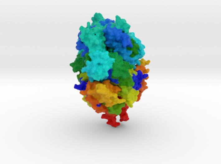 RSV Fusion Glycoprotein Prefusion 3d printed