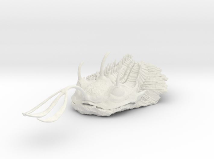 Trilobite - Walliserops Trifurcatus 3d printed