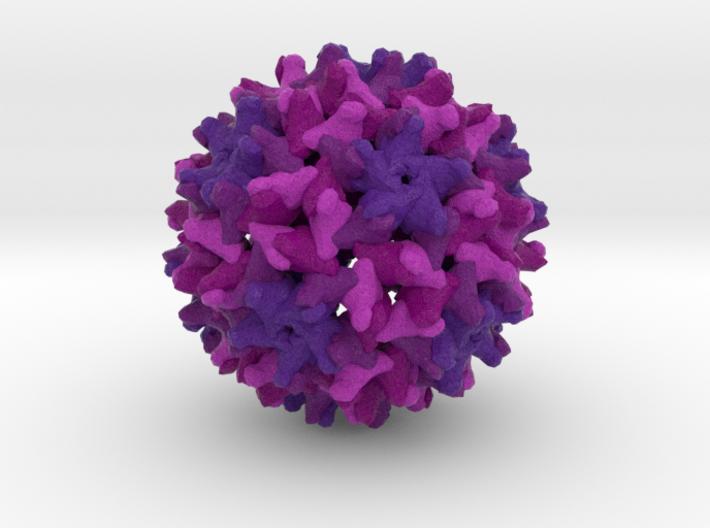 Woodchuck Hepatitis Virus 3d printed