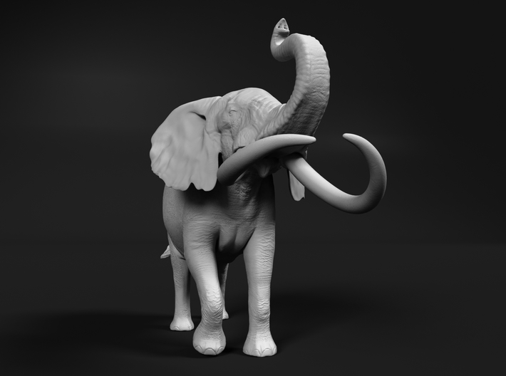 African Bush Elephant 1:20 Aggressive Male 3d printed