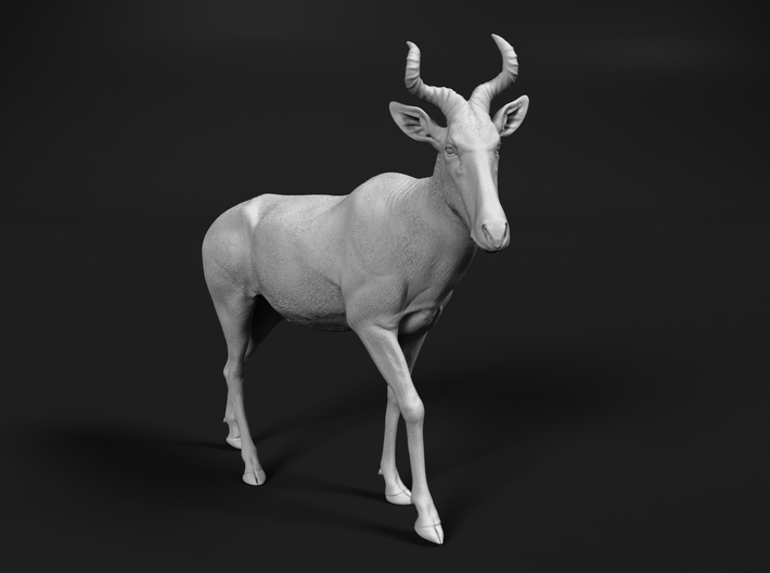 Coke's Hartebeest 1:76 Walking Male 3d printed
