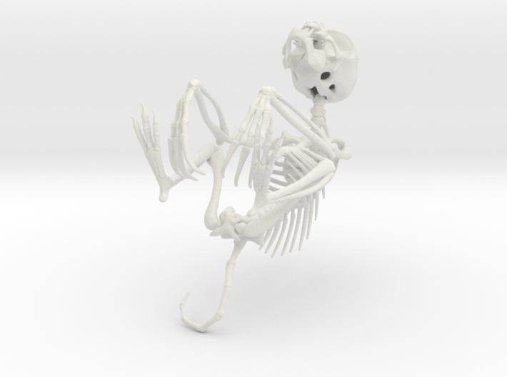 Chupacabra Skeleton  3d printed