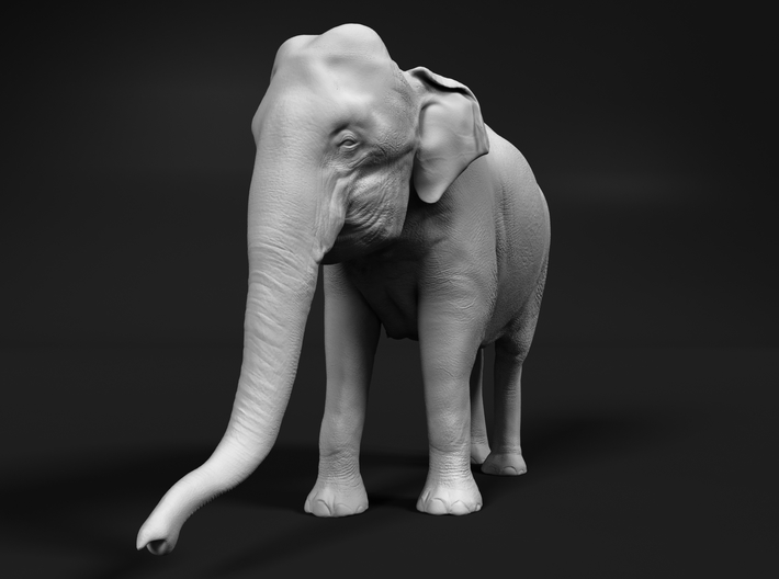 Indian Elephant 1:45 Standing Female 1 3d printed
