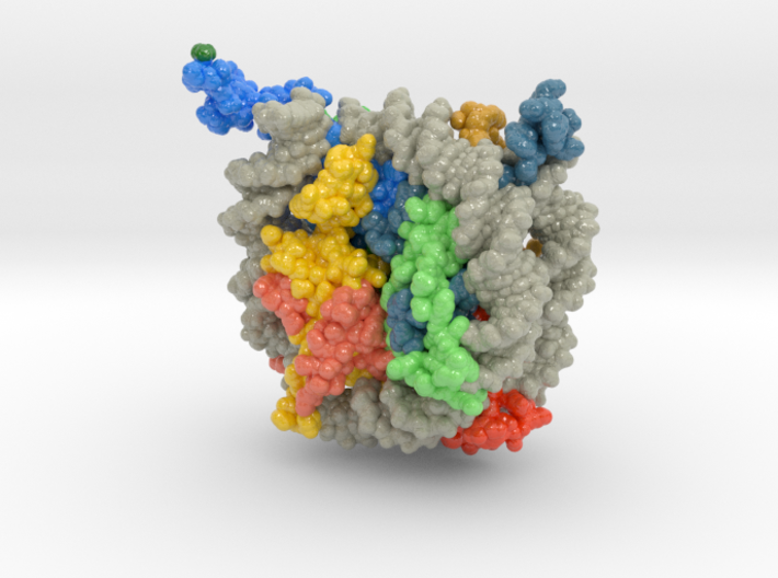 Nucleosome 1kx5 Methyl Groups 3d printed