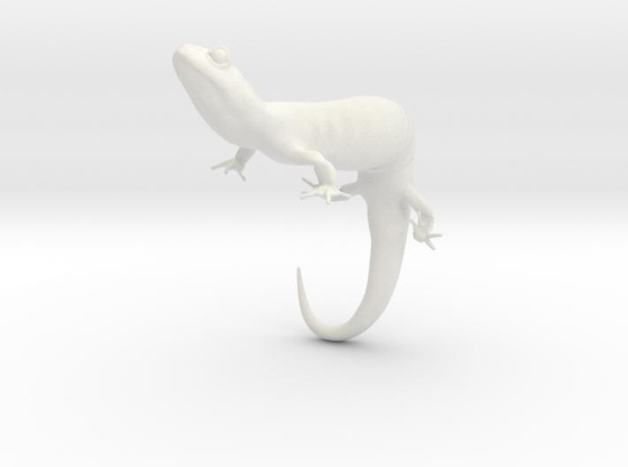 Salamander 6.4cm 3d printed